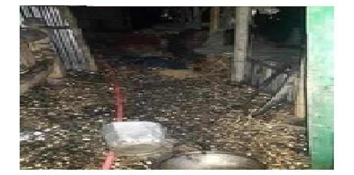 সিংড়ায় তিন কৃষক এর ঘর পুড়ে ছাই