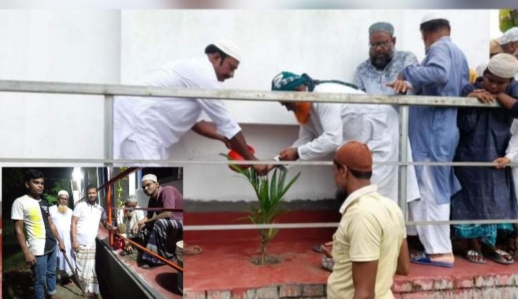 রাজশাহীর একটি মসজিদ প্রাঙ্গণে সুপারি গাছ রোপণ